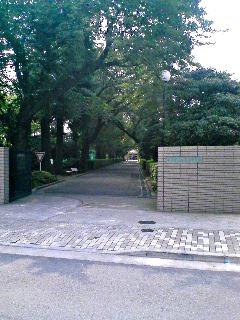 20070728.jpg