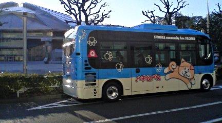 20080311.jpg