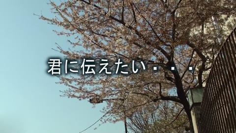 2011年上野高校の桜+台詞