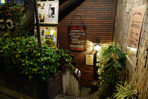 CHACOamemiya03.jpg