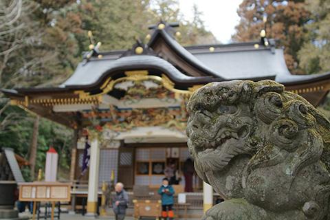 宝来神社の狛犬