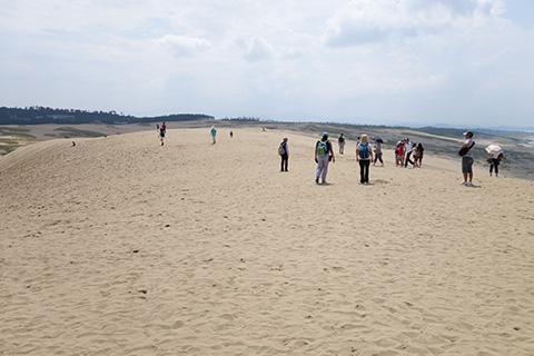 砂丘の一番高い場所