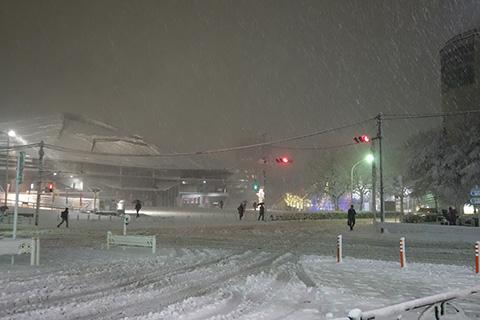 千駄ヶ谷の雪